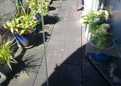 2cm Houtlook Balkon Den Hoorn